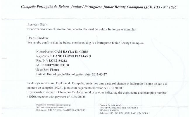 Ch Joven Portugal CAM
