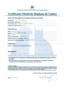 Certificado Oficial de Caderas de BANSHEE